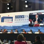 Grimoldi: Oggi a Marrakech al Forum dell'Osce dedicato al Mediterraneo